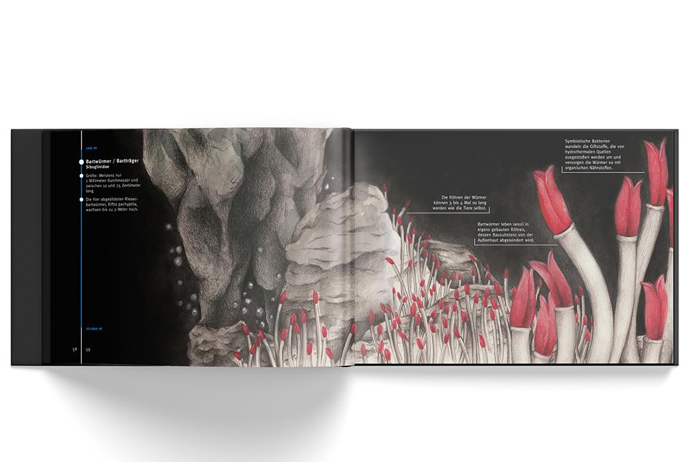 ELTFAUSEND_Bartwürmer_Melanie-Austermann_MEAU-DESIGN_Editorial-Design