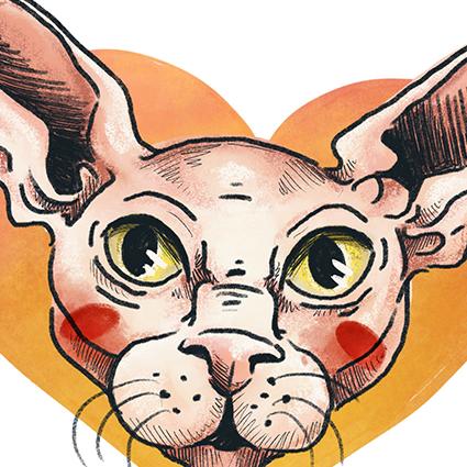 Vorschaubild für Portfoliobeitrag Katzenporträts, Illustrationen für Social Media Content zum Tag der Katzen