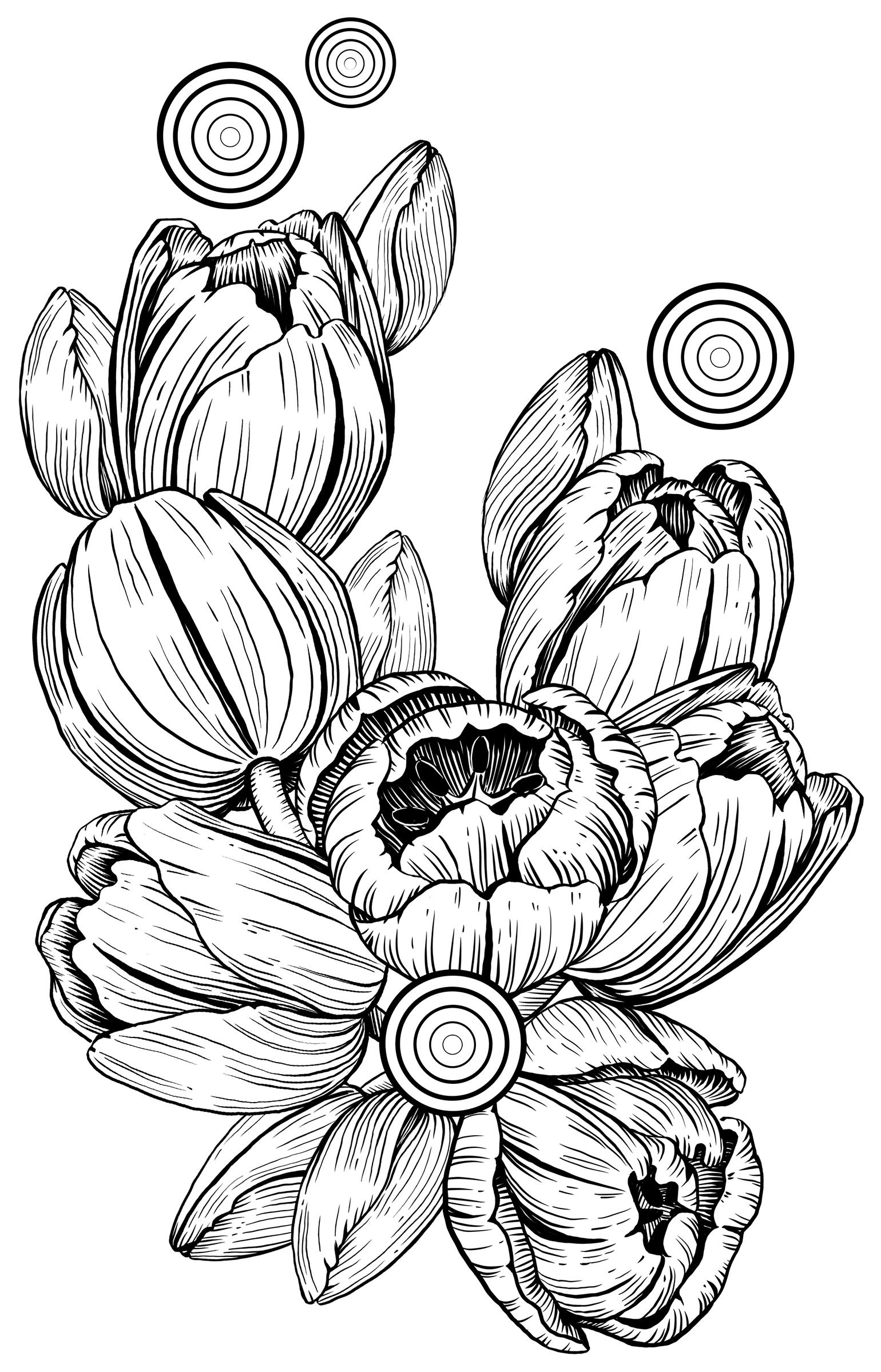 Tulpen_florale-Illustration_Pflanzenillustration_Melanie-Austermann_Meau-Design_Illustrator_Grafikdesigner_Komposition