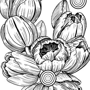 Vorschaubild für Portfoliobeitrag Pflanzenillustration, Tulpen für dekorative Zwecke